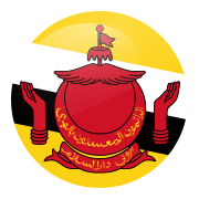 Free calls to Brunei
